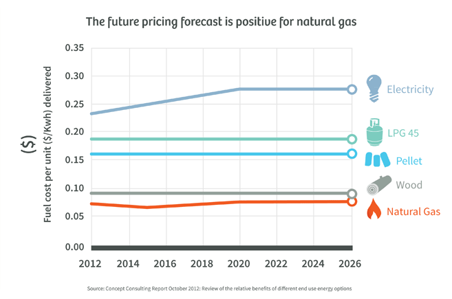 The future pricing forecast is positive for natural gas
